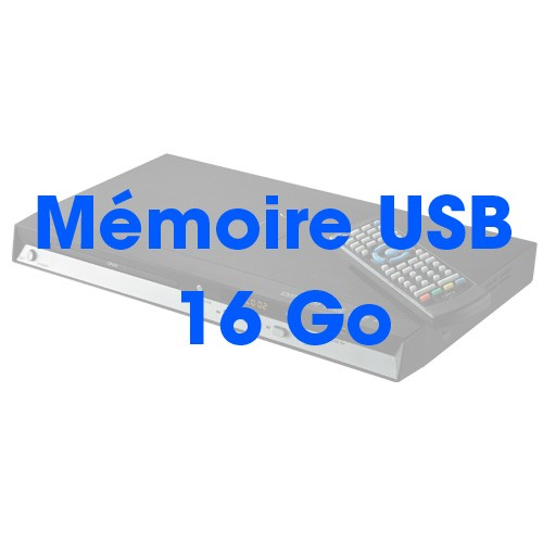 MÉMOIRE USB 16 Go