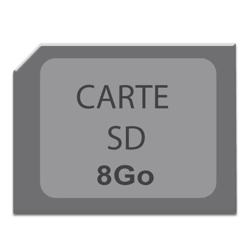 Carte mémoire micro SD 8 Go